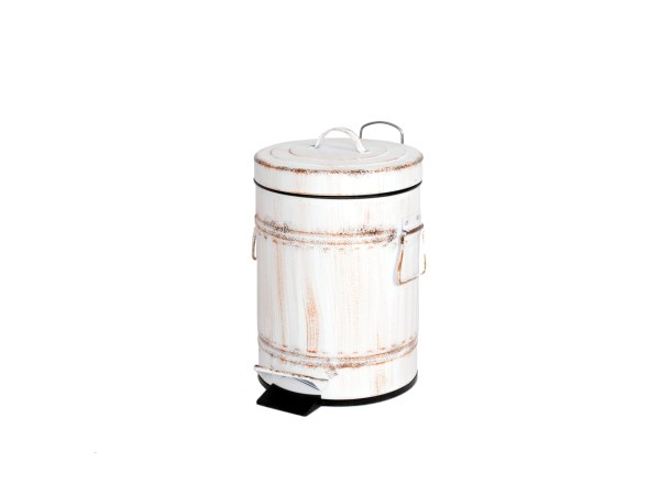Brush color dust bin