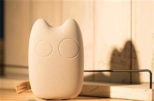 Animal-Shapes Totoro Power Bank 8000MAH, Cute Mobile Charger YK46
