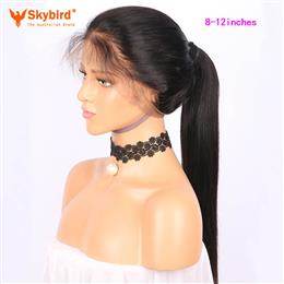 Skybird 8-12 inches   250% Density 360 Lace Frontal Wig Pre Plucked With Baby Hair Straight Natural Hairline Brazilian Remy Hair Wigs