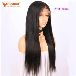 Skybird 14-16 inches   250% Density 360 Lace Frontal Wig Pre Plucked With Baby Hair Straight Natural Hairline Brazilian Remy Hair Wigs