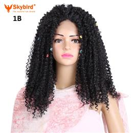 Skybird 22inch long Afro Kinky Curly lace front Wig with Bangs Black Synthetic Wigs women