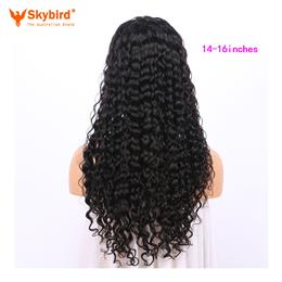 Skybird 14-16 inches Hair 360 Lace Frontal Wigs With Baby Hair 250% Den...