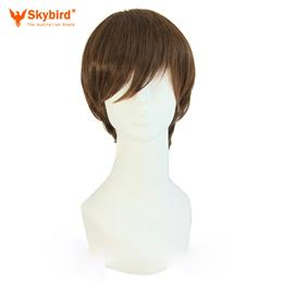 Skybird Short Straight Hair 25cm Synthetic Wigs High Temperature Fiber Nautral Cosplay Wig