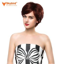 Skybird Real Human Hair Wig Short Hair Side Part Dark Brown