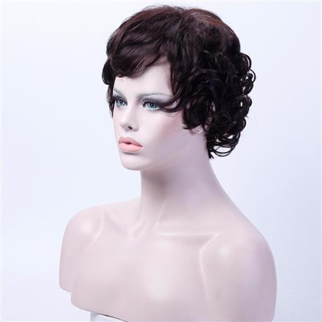 10 inch Short Brown Wigs for Women Curly Cosplay Wig, High Temperature Fiber