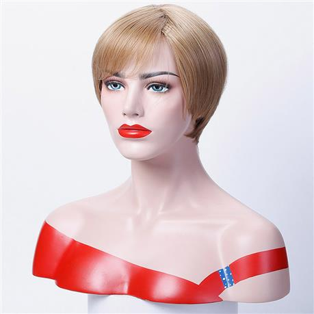 12 inch Straight Short Wigs Synthetic Hair for Woman Cospaly Wig, High Temperature Fiber